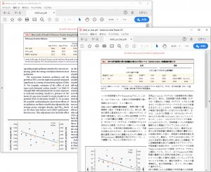 PDF ダイレクトファイル翻訳